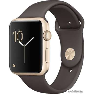 Apple Watch Series 1 42mm Gold with Cocoa Sport Band [MNNN2]