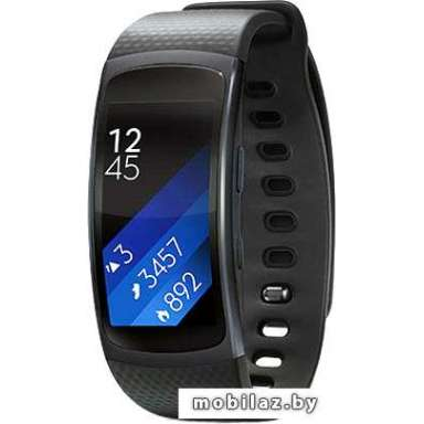 Samsung Gear Fit 2 (черный) [SM-R360]