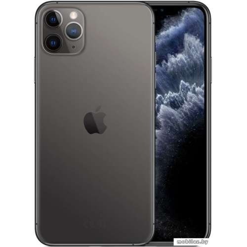 Смартфон Apple iPhone 11 Pro Max 64GB (серый космос) фото 1